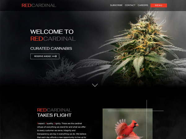Red Cardinal Website Thumbnail